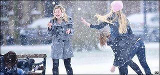_45451506_snowball_pa_466